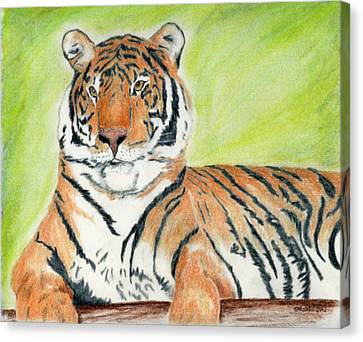 A Tiger's Rest Canvas Print by Mark Schutter