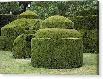 A Topiary Garden At Longwood Gardens Canvas Print