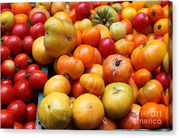A Variety Of Fresh Tomatoes - 5d17811 Canvas Print by Wingsdomain Art and Photography