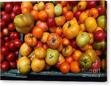 A Variety Of Fresh Tomatoes - 5d17812 Canvas Print by Wingsdomain Art and Photography