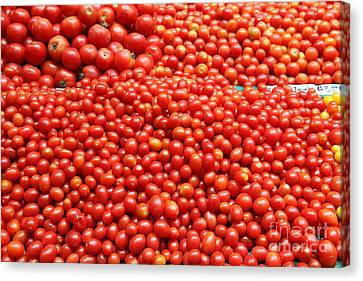 A Variety Of Fresh Tomatoes - 5d17833 Canvas Print by Wingsdomain Art and Photography