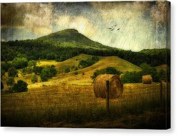 A View Of Jump Mountain Canvas Print by Kathy Jennings