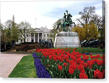 A View Of The White House Canvas Print by Rex A. Stucky