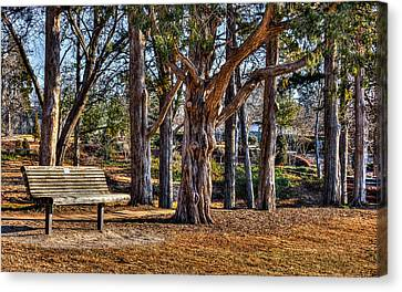 A Walk In The Park Canvas Print by Doug Long