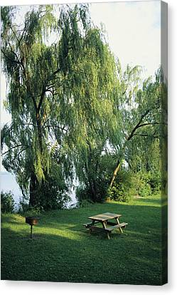 A Willow-lined Lakeside Picnic Area Canvas Print