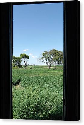 A Window With A View Canvas Print by Brian  Maloney