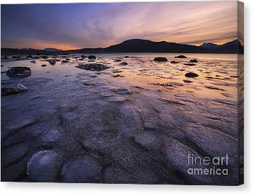 A Winter Sunset At Evenskjer In Troms Canvas Print by Arild Heitmann