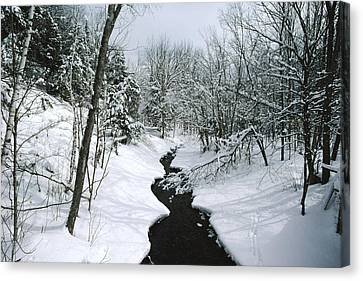 A Winter View Of Rush Brook Canvas Print by James P. Blair