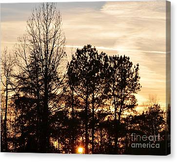 Canvas Print featuring the photograph A Winter's Eve by Maria Urso