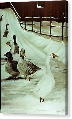 A Winter's Walk Canvas Print by Sheila Kinsey