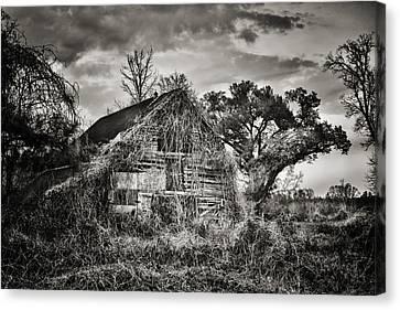 Abandoned Barn 2 Canvas Print by Brenda Bryant