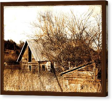 Abandoned Barn  Canvas Print by Ann Powell
