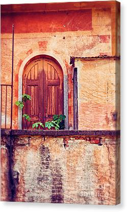 Abandoned Building Door With Leaves Canvas Print by Silvia Ganora