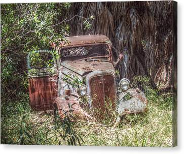 Abandoned Canvas Print by Cindy Nunn