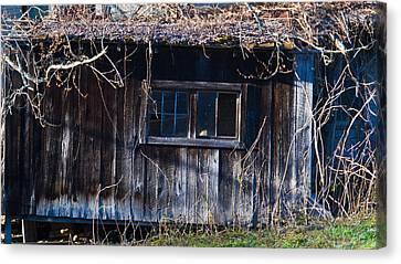 Abandoned Farm House Addition  Canvas Print by Douglas Barnett