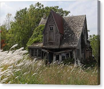 Abandoned Farmhouse 2 Canvas Print by Bruce Ritchie