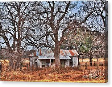 Canvas Print featuring the photograph Abandoned House 512.3 by Joe Finney