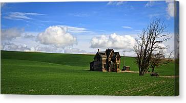Abandoned House On Green Pasture Canvas Print by Steve McKinzie