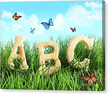 Abc Letters In The Grass Canvas Print by Sandra Cunningham