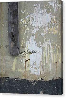 Abstract-13 Canvas Print by Todd Sherlock