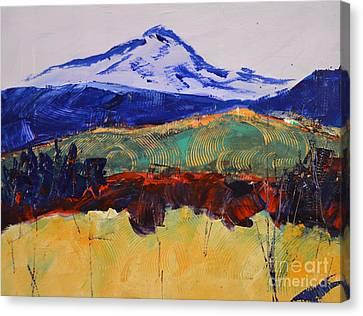 Abstract Fall Canvas Print by Barbara Tibbets