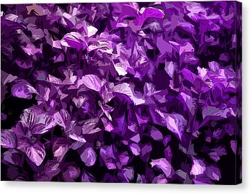 Canvas Print featuring the digital art Abstract Purple by Serene Maisey