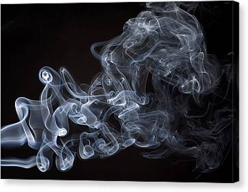 Abstract Smoke Running Horse Canvas Print by Setsiri Silapasuwanchai