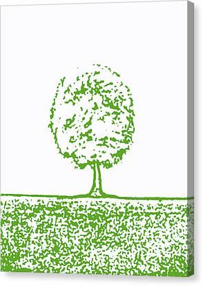 Abstract Tree By Shawna Erback Canvas Print by Shawna Erback