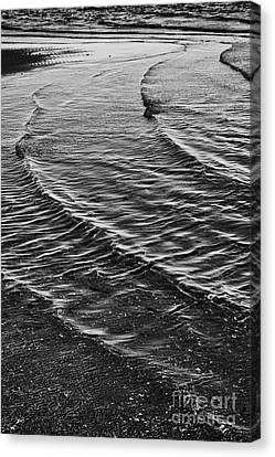 Abstract Waves - Black And White Canvas Print by Hideaki Sakurai