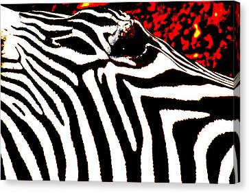 Abstract Zebra 001 Canvas Print by Lon Casler Bixby