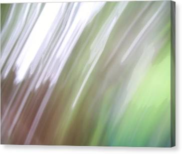 Canvas Print featuring the photograph Abstracted Air by Ginny Schmidt