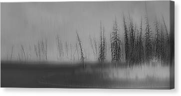 Abstruse Canvas Print by Robin Webster