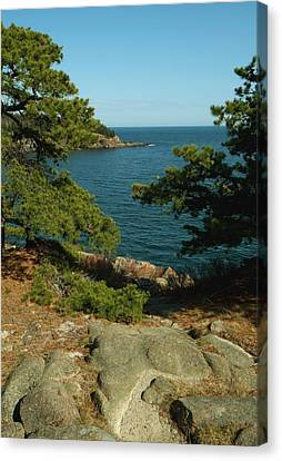 Acadia In Maine Canvas Print