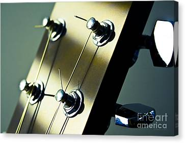Acoustic Guitar Head Canvas Print