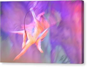 Acrobats Canvas Print