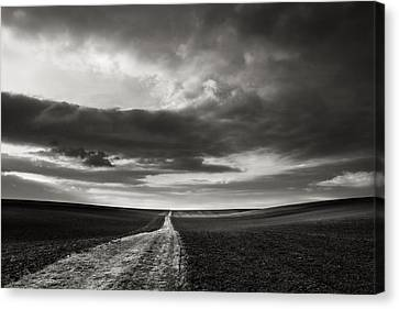 Across The Field  Canvas Print by Jaromir Hron