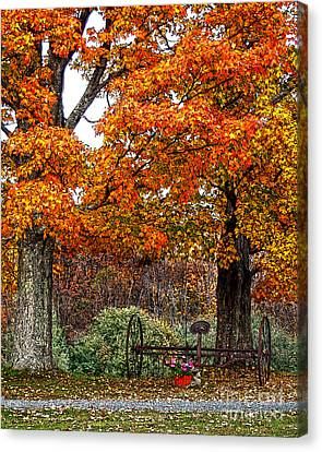 Adirondack Autumn Beauty Canvas Print by Diane E Berry