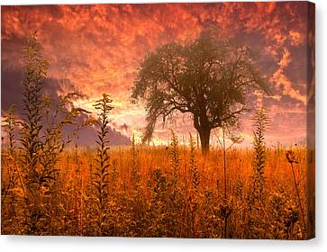 High Park Fire Canvas Print - Aflame by Debra and Dave Vanderlaan