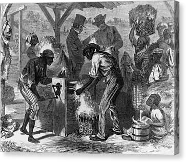 African American Slaves Using A Cotton Canvas Print by Everett
