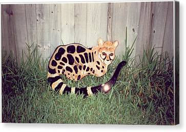 African Genet Canvas Print by Val Oconnor