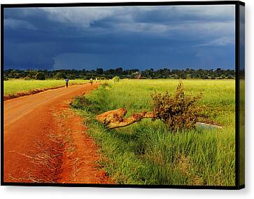 African Landscape Canvas Print by Marian Barbu