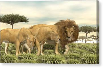 African Lion Pride Canvas Print by Walter Colvin