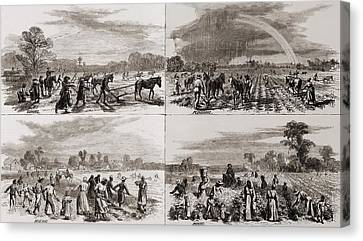 After The Civil War Many African Canvas Print by Everett