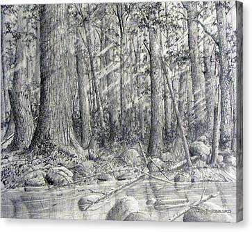 Canvas Print featuring the drawing After The Flash Flood by Jim Hubbard