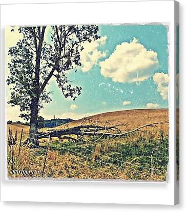 Edit Canvas Print - After The Storm by Mari Posa
