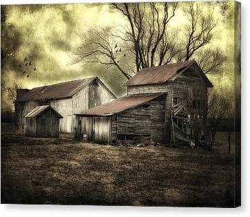 Canvas Print featuring the photograph After The Storm by Mary Timman