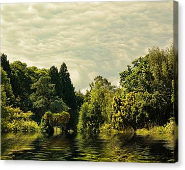 After The Storm Canvas Print by Sharon Lisa Clarke