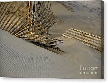 Canvas Print featuring the photograph After The Storm by Tamera James