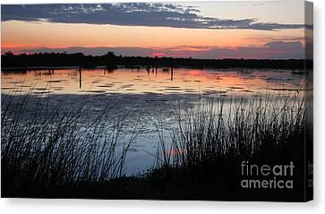 After The Sun Sets Canvas Print by Jennifer Zelik
