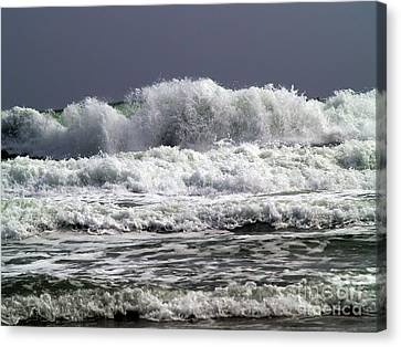 Aftermath Of A Storm Iv Canvas Print by Patricia Griffin Brett